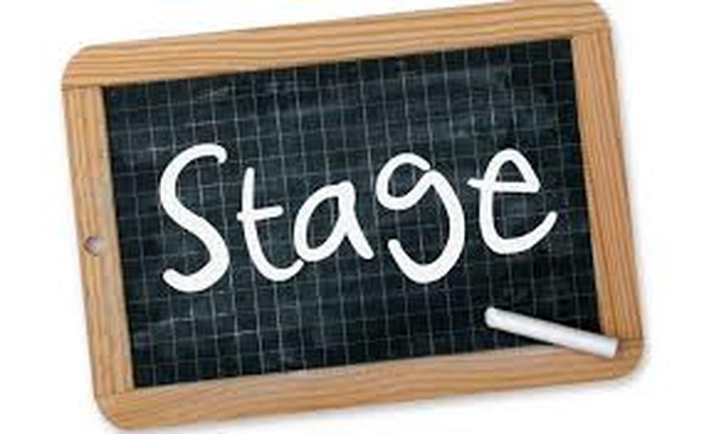 Stages en entreprises.